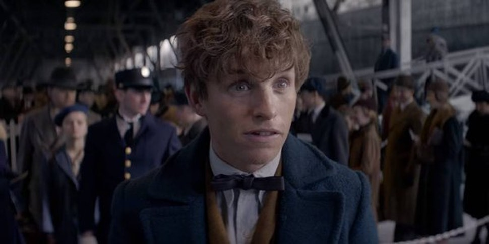 On Newt Scamander, Toxic Masculinity, & The Power Of ...