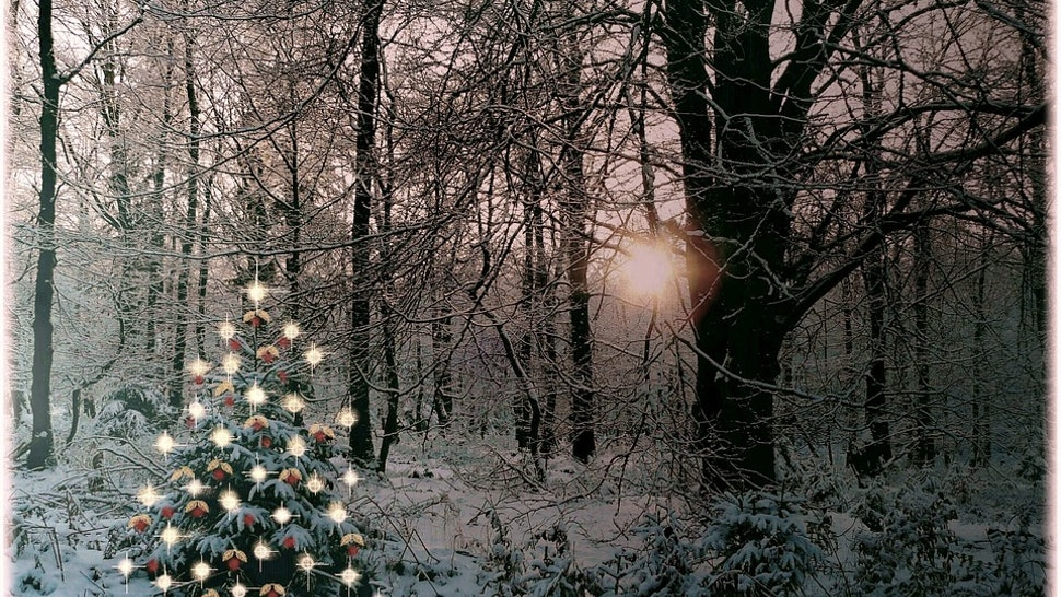 When Was Christmas First Celebrated.When Was Christmas First Celebrated The Holiday Is Newer