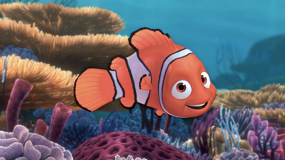 finding nemo could be a true story except for the talking fish part