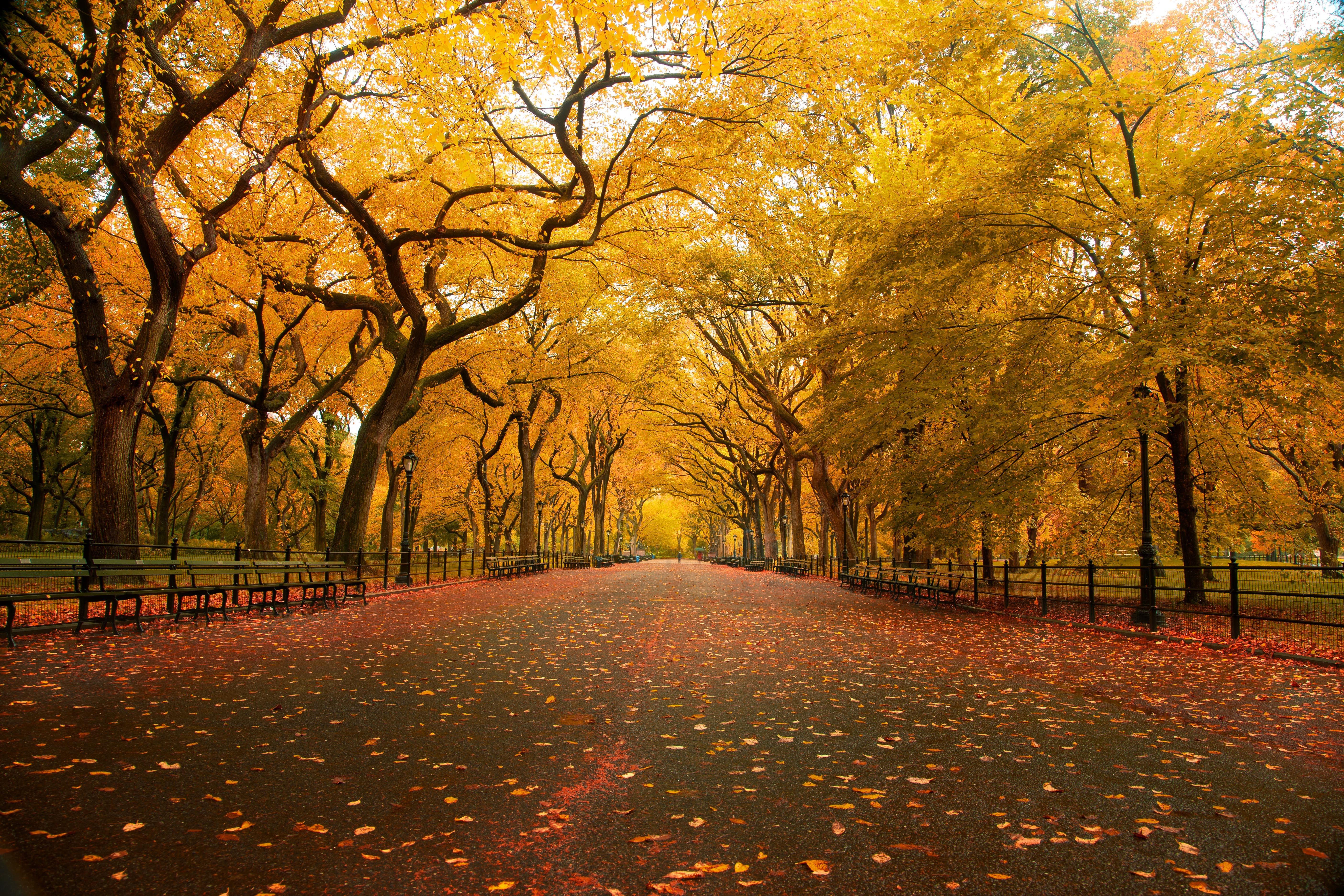 10 Autumn Quotes To Get You Excited About The First Day Of Fall