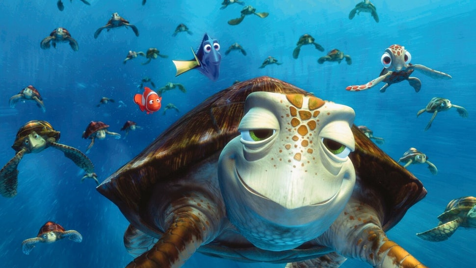 Image result for finding nemo turtle