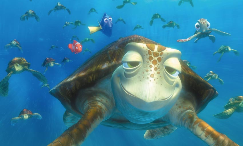 crush is in finding dory the turtle s appearance is totally sick