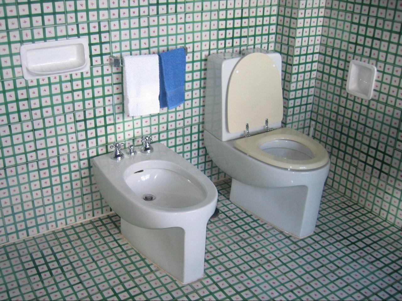 You\'ve Been Going To The Bathroom Wrong Your Whole Life — VIDEO
