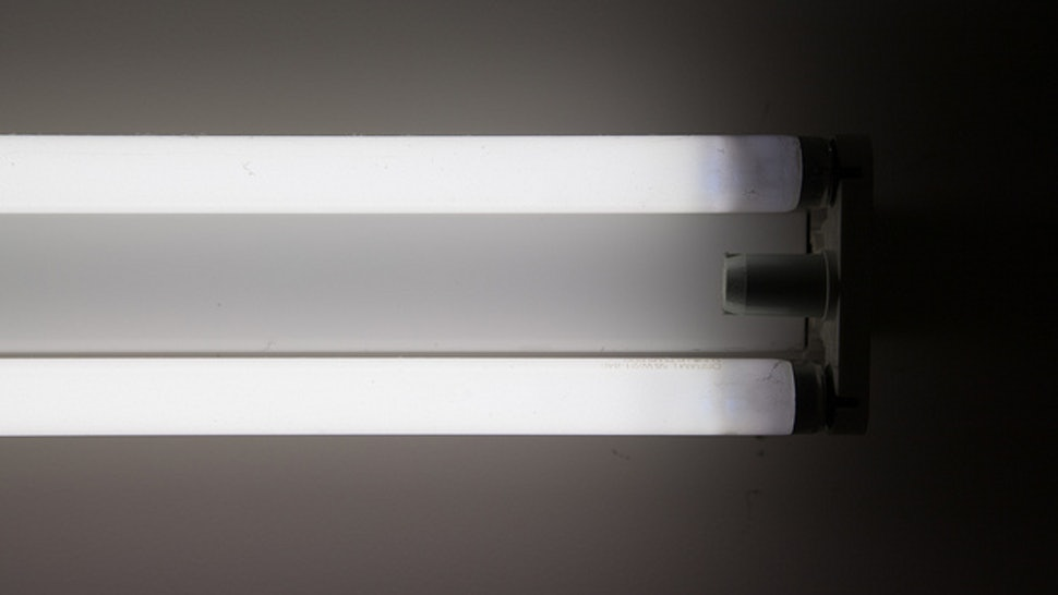 Is Fluorescent Light Bad For You? 3 Things You Should Know