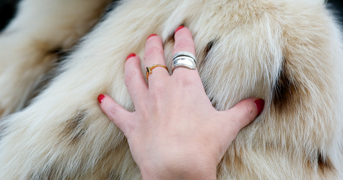 How To Clean Your Faux Fur Coat In, How To Wash A Fur Coat In Washing Machine