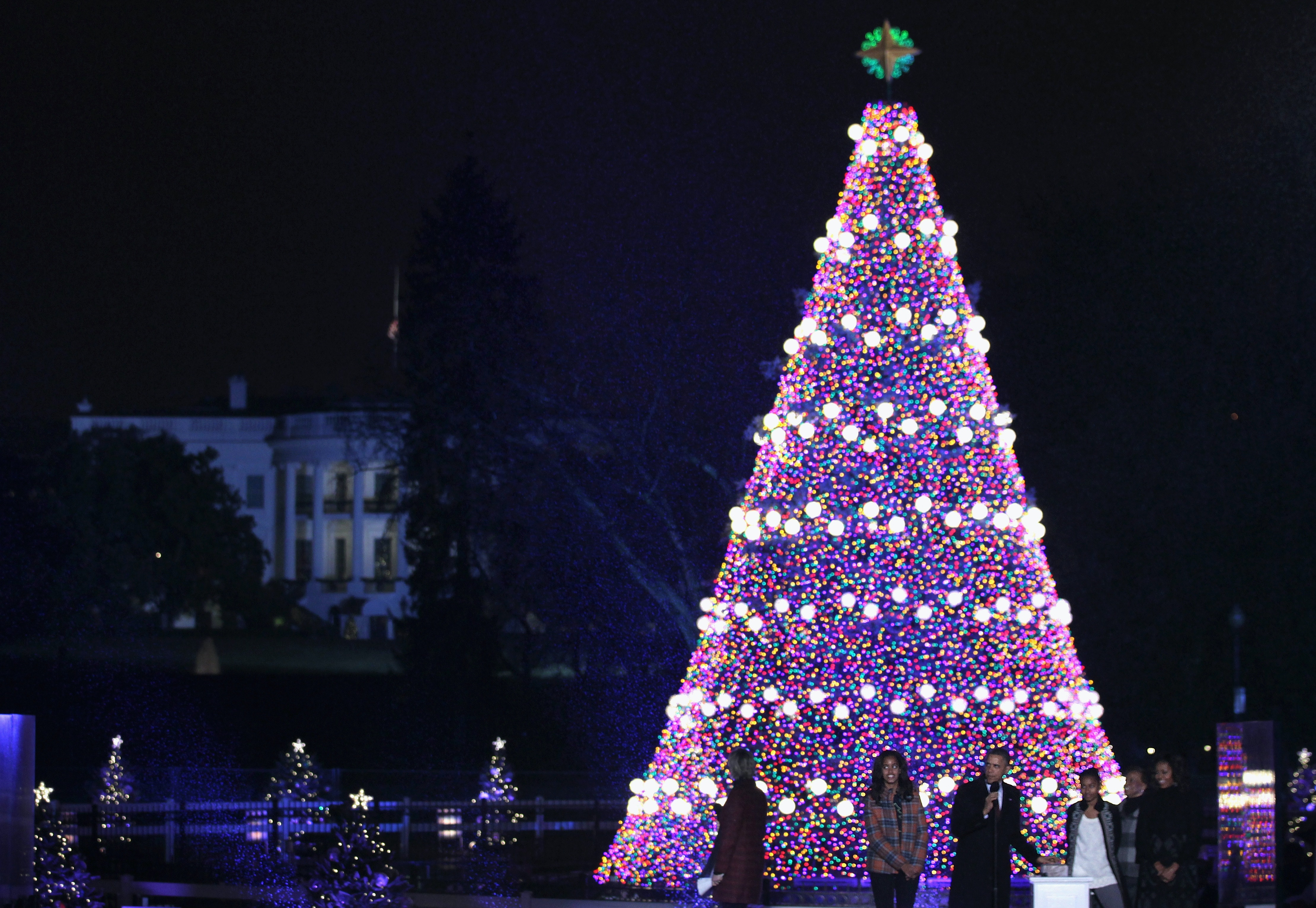 how to code white house christmas tree lights into any shiny shape you like thanks to google