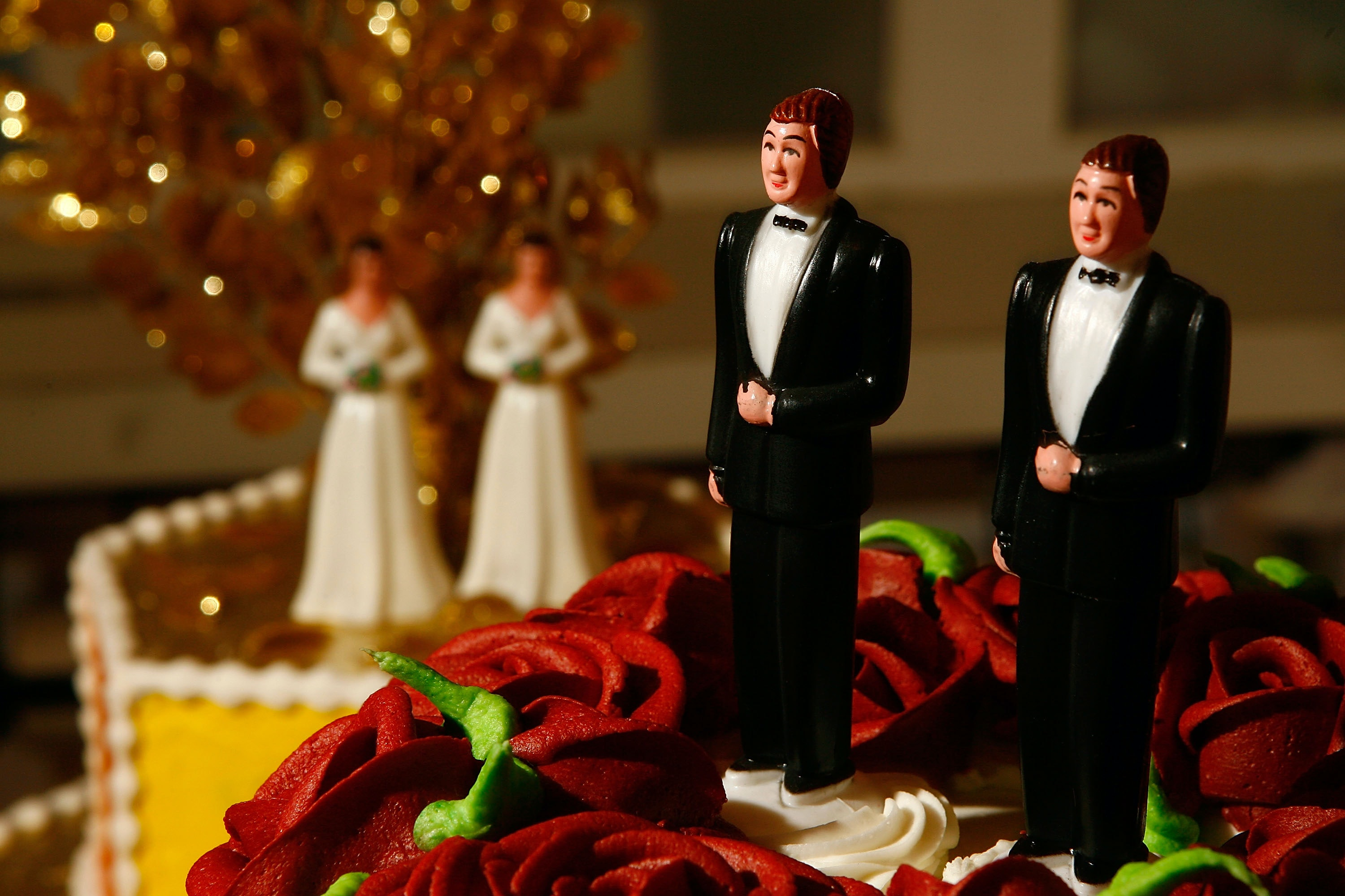 Marriage is traditionally a heterosexual institution