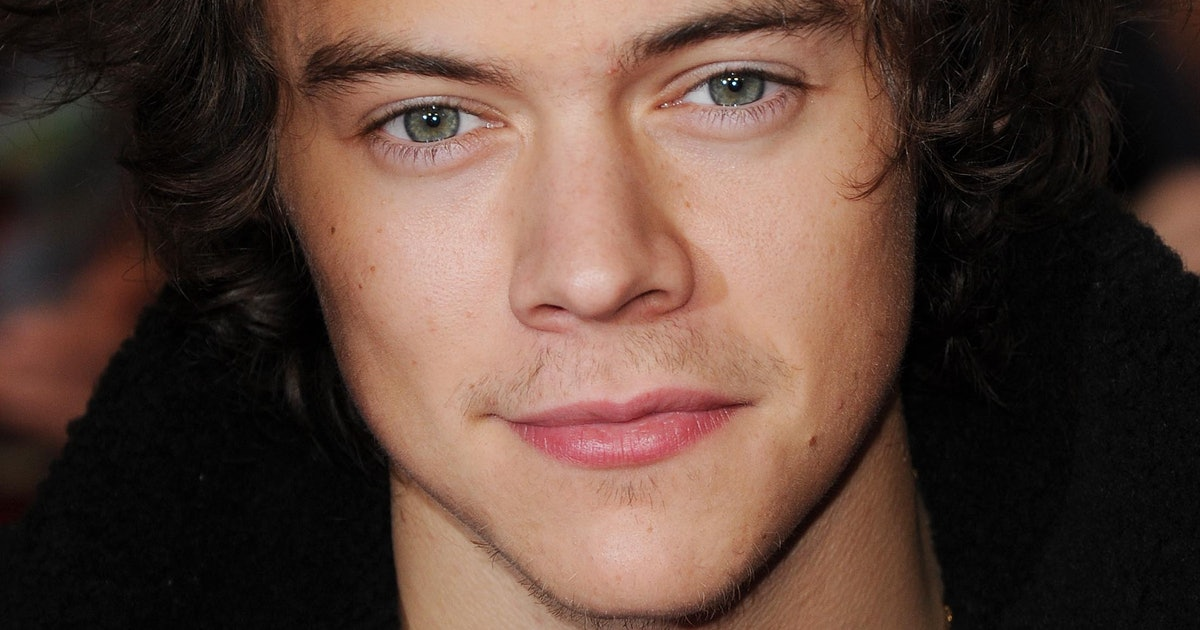 9 Best Harry's journal images | Harry styles, I love one ... |Harry Styles Pooping