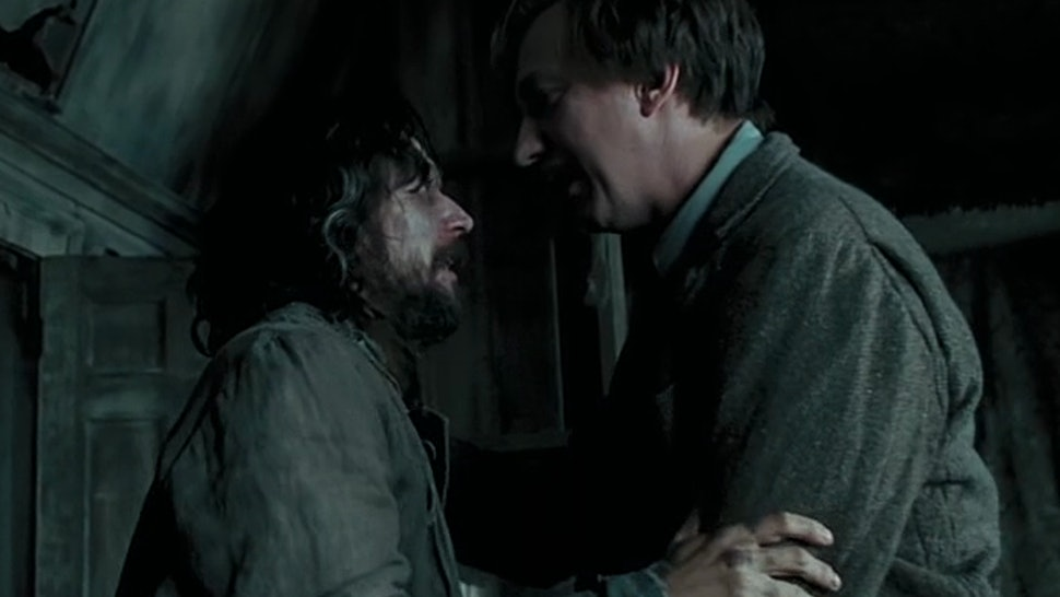 This Fan Theory About Sirius Black & Remus Lupin Will ...
