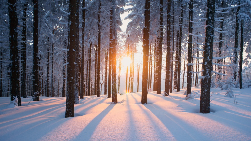 20 Snow Quotes To Help You Find Beauty In Any Blizzard Including