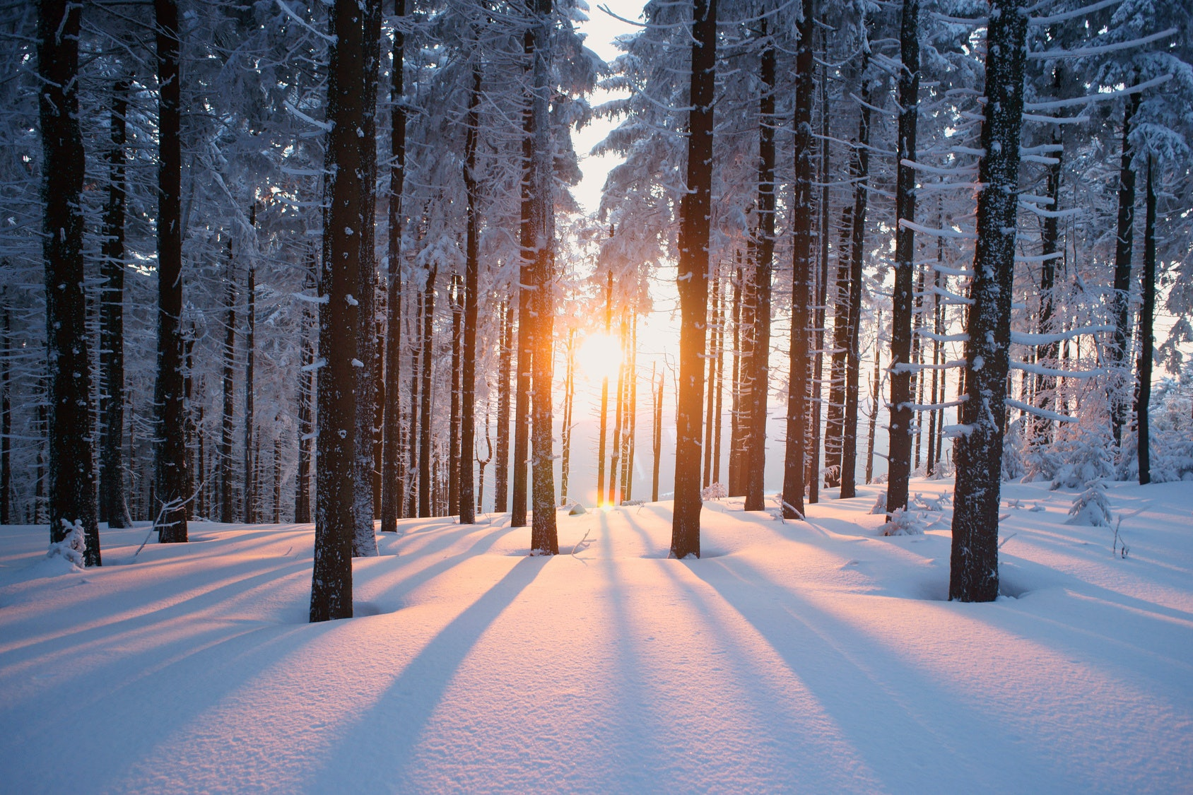20 Snow Quotes To Help You Find Beauty In Any Blizzard U2014 Including Winter  Storm Juno