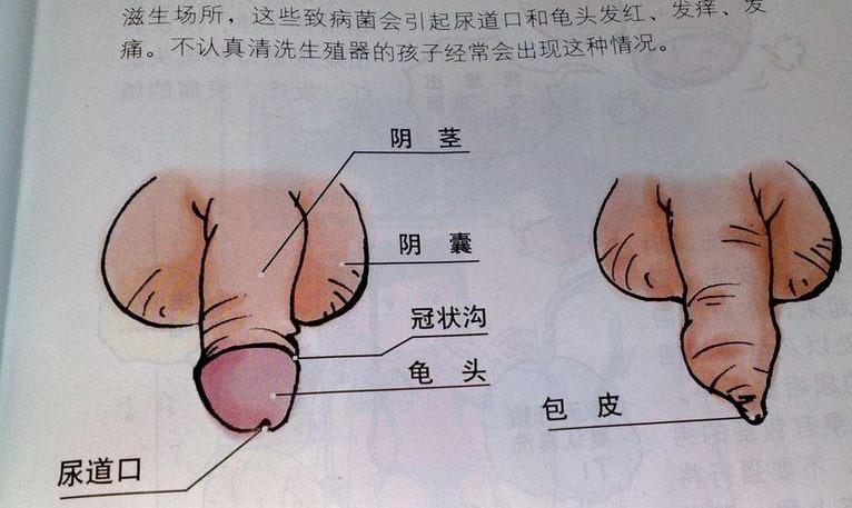 Chinese women like sex