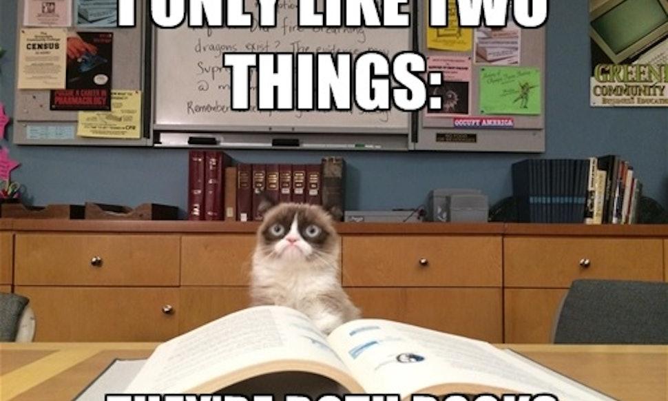 S Cat Test