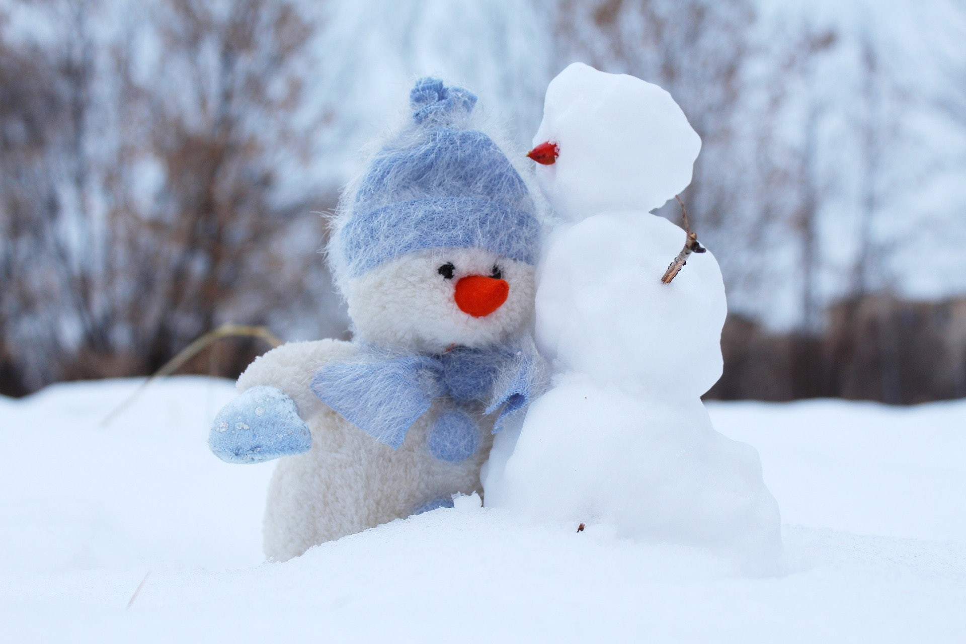 The 11 Best Wintry Quotes From Books To Make You Want To Build A Snowman