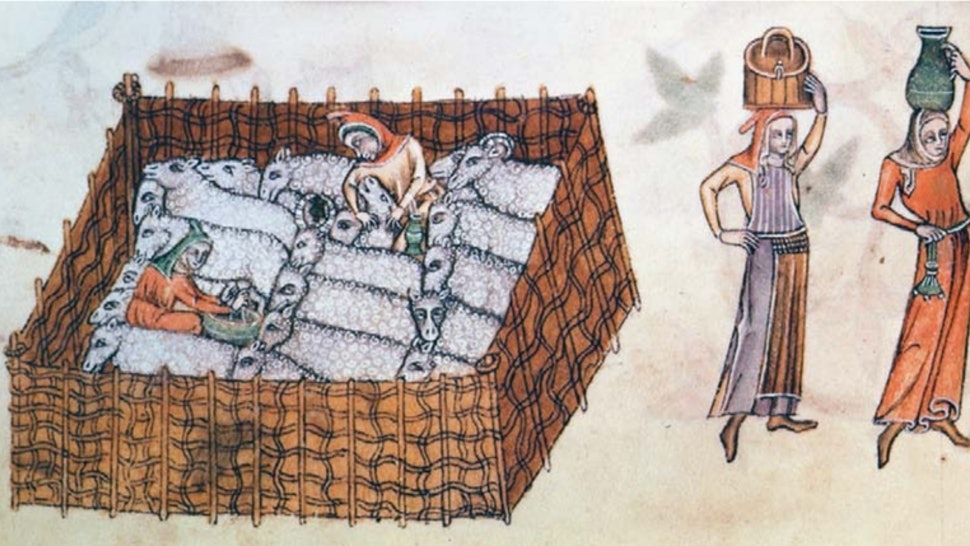 10 Illegal Things In Medieval Europe That Were Totally