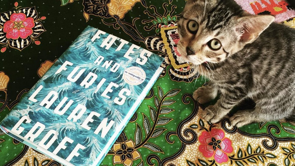 Lauren Groff S Fates And Furies Is The Next Book You Have