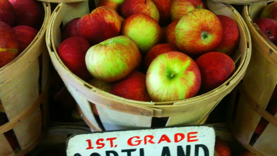 10 Best Places To Go Apple Picking In The U S No Matter Where In