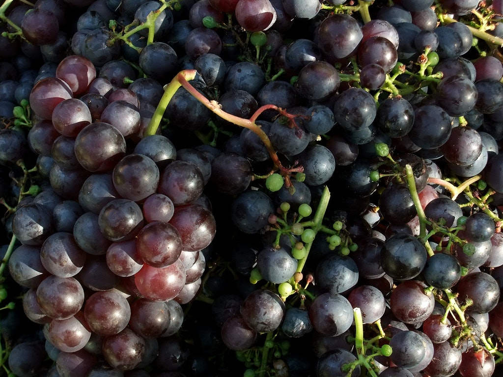 the black grape benefits for skin & hair will brighten up your