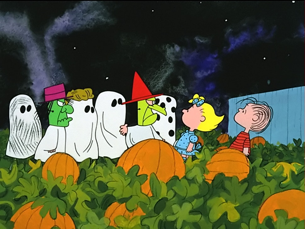 Image result for the great pumpkin charlie brown