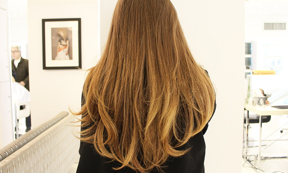 What Is Ecaille Tortoiseshell Hair Dye 6 Things You Should Know