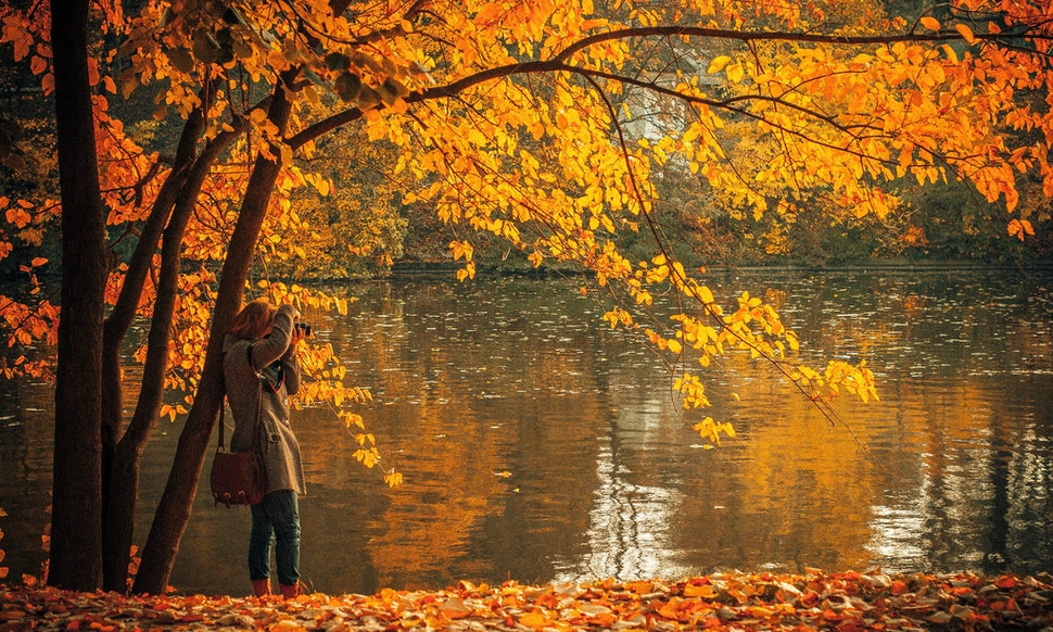 can t wait for fall to arrive 8 signs that autumn is definitely