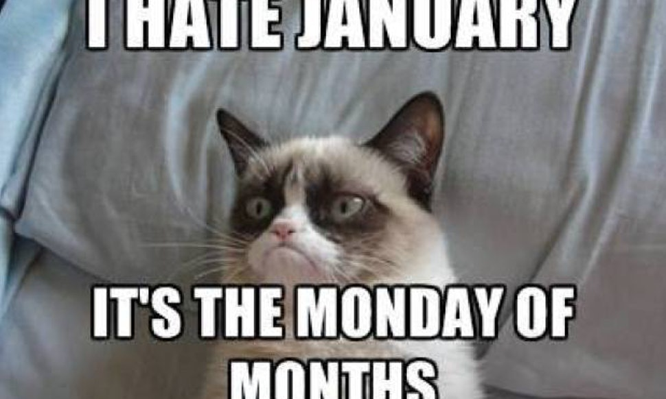 Funny Memes For Winter : 12 cold weather memes that sum up how perfectly awful winter feels