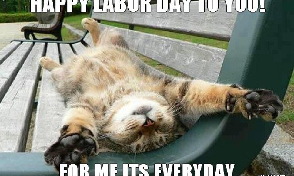 Funny Memes For Weekend : 7 funny labor day memes that will keep you laughing all weekend long