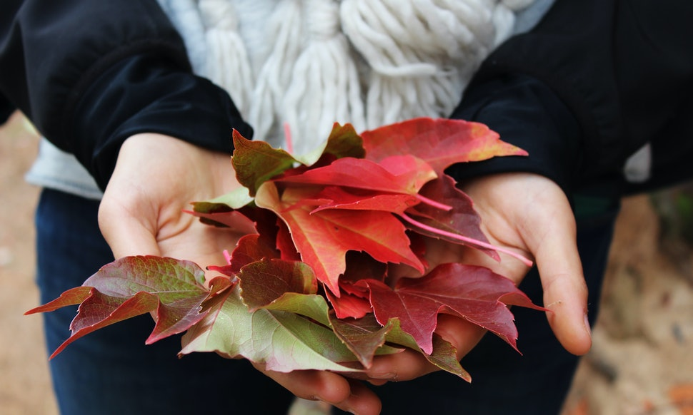 What Does The Fall Equinox Symbolize The First Day Of Autumn Is
