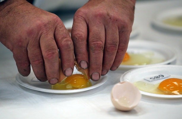 Can Bad Eggs Give You Food Poisoning