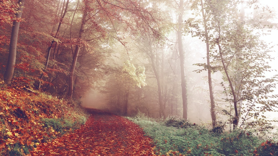 13 Inspiring Fall Quotes For The First Day Of Autumn 2016 ...