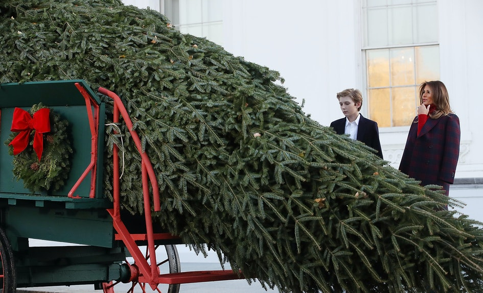 melania trumps white house christmas decorations are here its so festive