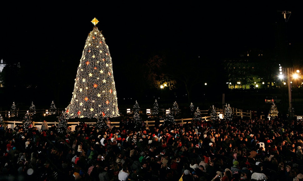 How To Watch The National Christmas Tree Lighting If You Don\'t Plan ...