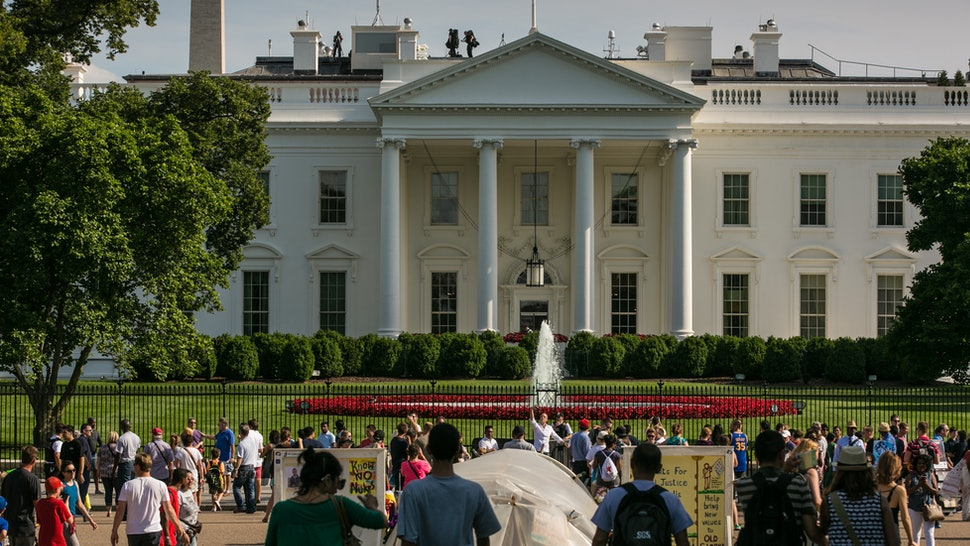 What Is The Jackson Magnolia The White House Grounds Are About To