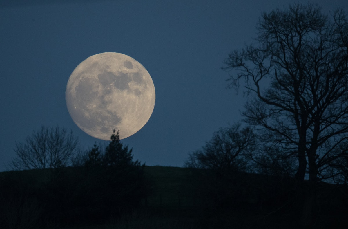 The Meaning Of The Wolf Moon On New Year's Day Provides Space To Make Cleansing Changes To Your Life