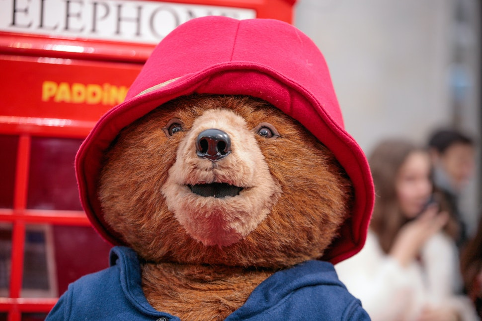 The 10 Paddington Bear Quotes That Will Always Inspire Joy
