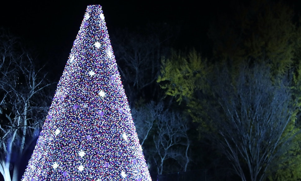 How To Watch The 2018 National Christmas Tree Lighting Ceremony If ...