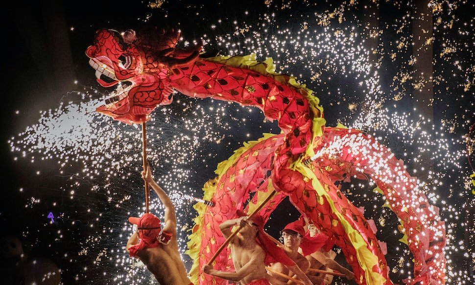 What Does The Year Of The Dog Mean For Your Chinese Zodiac Sign