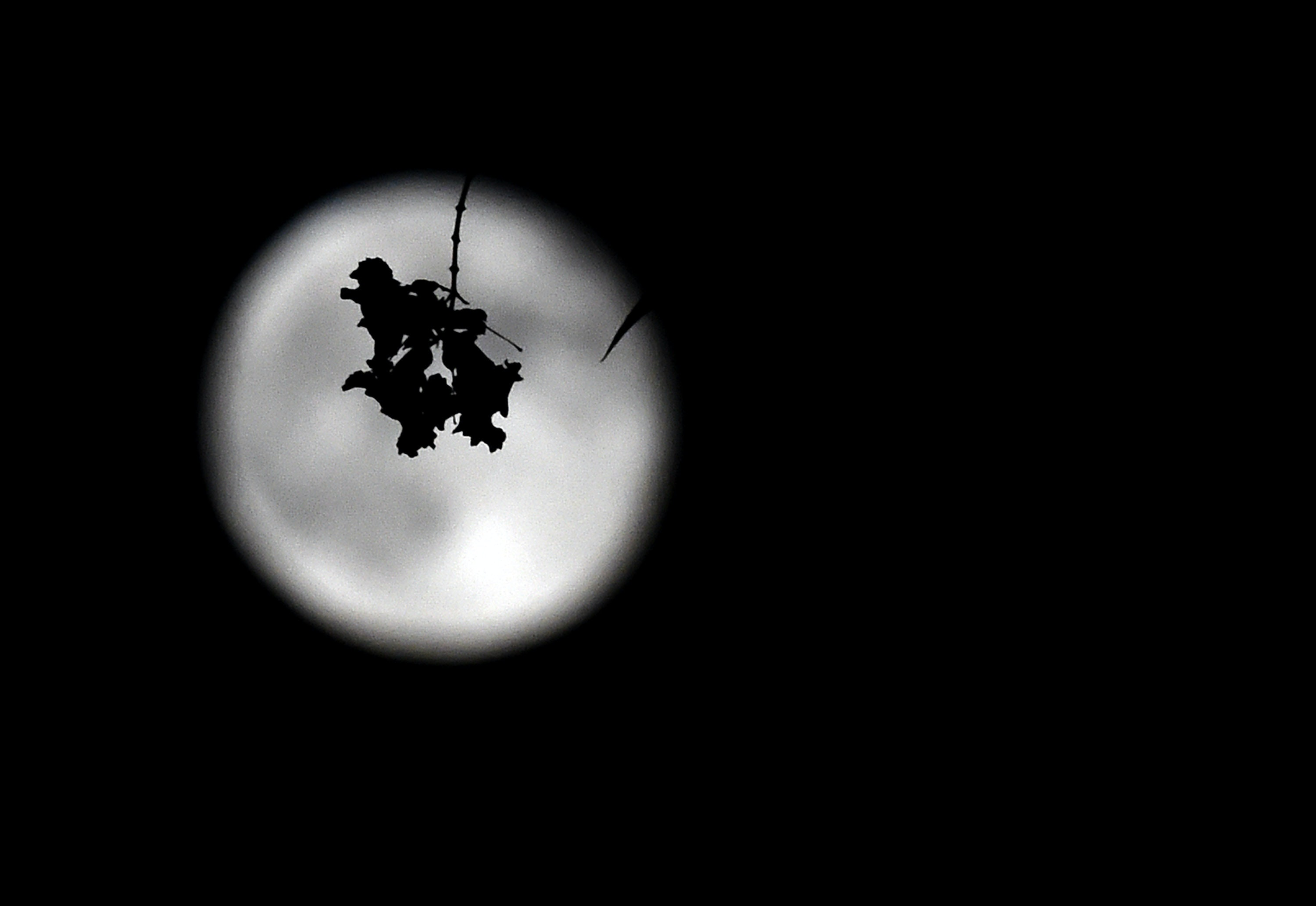 What Does It Mean If The Full Moon Is In Sagittarius? The May 2018