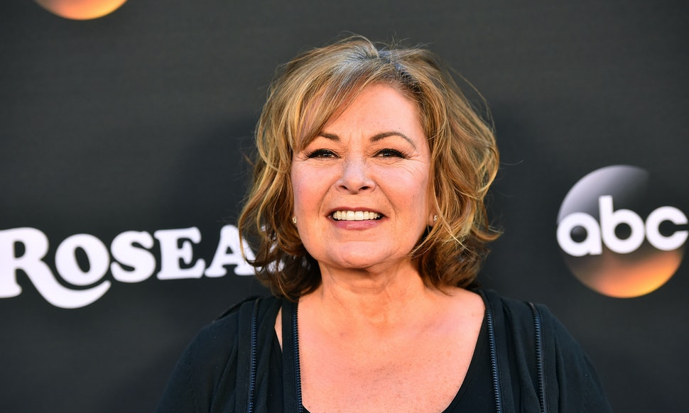 Dictionary Responded To Roseanne Barrs Racist Valerie Jarrett