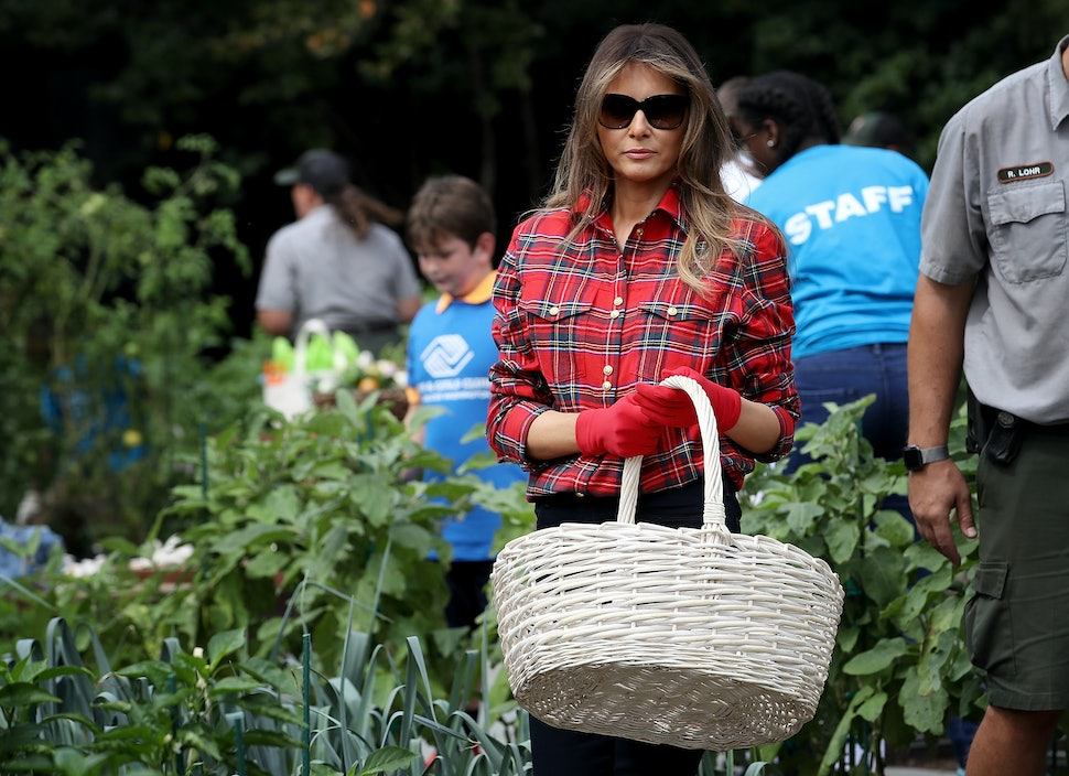 Картинки по запросу Melania Trump in Michelle Obama's vegetable garden memes