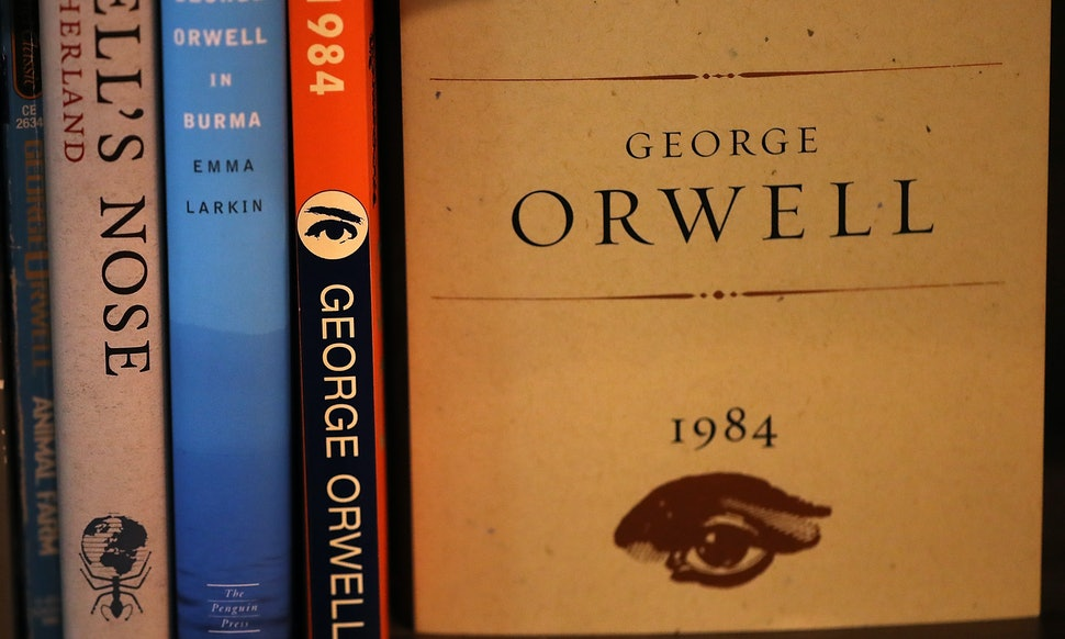 13 Books We Hated In High School But Loved Or At Least Tolerated