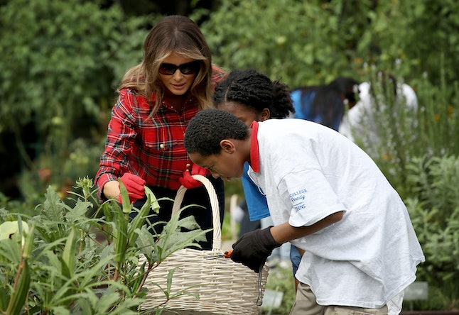 What Happened To Michelle Obamas Garden Shows Melania Trump Is