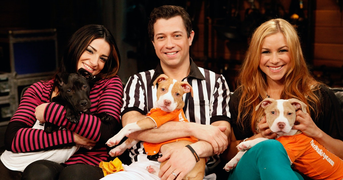 Puppy Bowl Referee Dan Schachner Has The Doggo-Lovin' Job Of Your Dreams