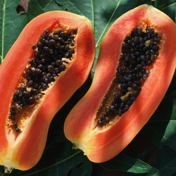 "Two papaya halves show their seedy interiors. If you're wondering ""is my vagina normal,"" rest assured there's a 10/10 chance it is."