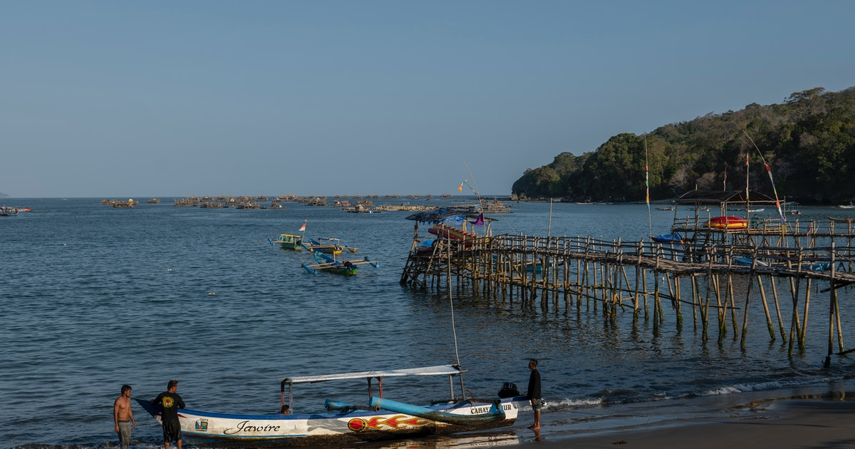 Supercharged Indian Ocean dipole responsible for environmental disasters