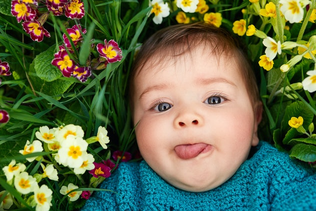 The most popular baby names for girls in 2019 included a number of names drawn from plants and flowers.
