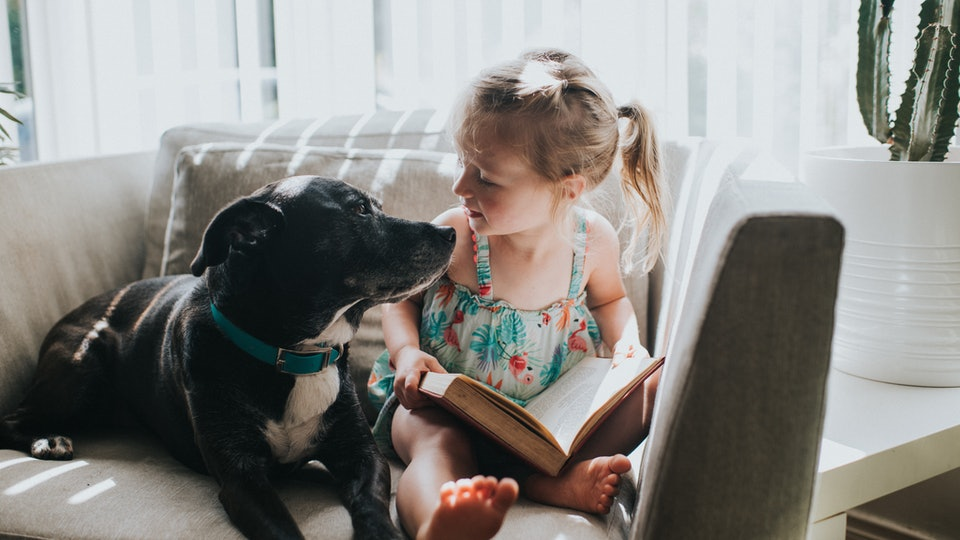Kids read longer in the company of dogs, according to a new study.
