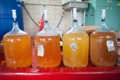 Hard cider ferments in vats. While both kombucha and cider are made using fermentation, they have di...