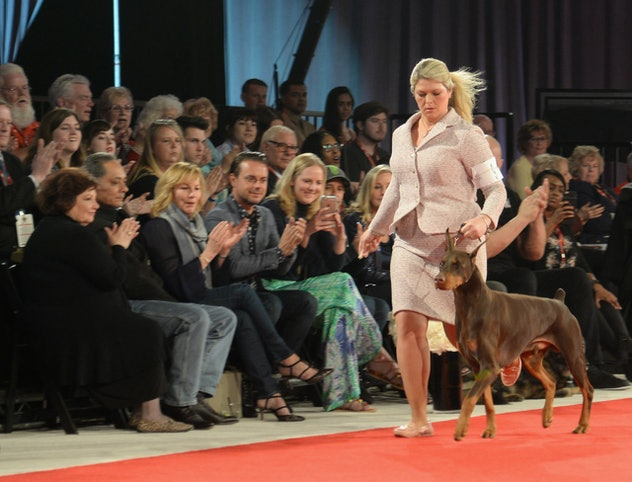 A proud dog owner getting in her steps alongside her puppy at the Royal Canin Puppy Show in Orlando.