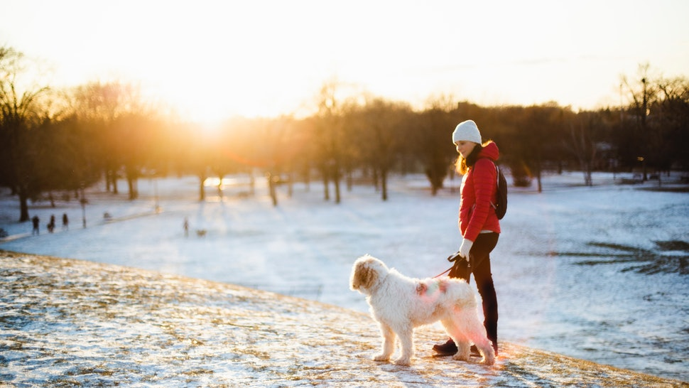 A woman walks a dog in a winter landscape. After the winter solstice, changing light and temperature levels can change your body's sleep and circadian rhythms.